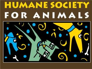 FRONT-HumaneSocietyofRogers (1)